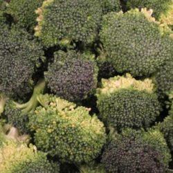 About Cavatelli con Broccoli
