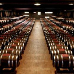 Wine Pairings for Spaghetti Aglio Olio e Peperoncino